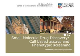 Lecture 5 - Cell based assays.pdf
