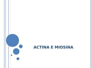 fisiologia - actina e miosina.ppt