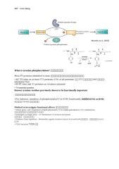 techo -note (1).docx