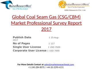 Global Coal Seam Gas (CSG-CBM) Market Professional Survey Report 2017.pptx